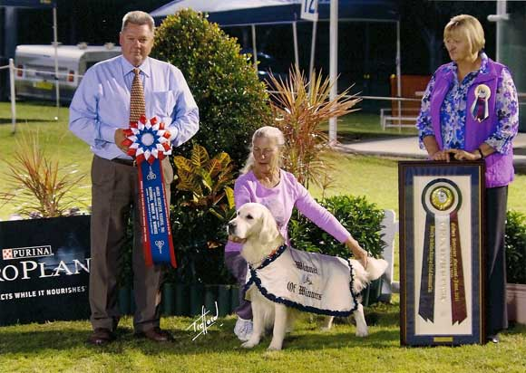 2011 National Obedience Winner of Winners